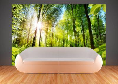 504-Fototapete-Wall-Art-Tapete-Aufkleber-Wandbild-Wlad-Sonnenstrahlen-drucken