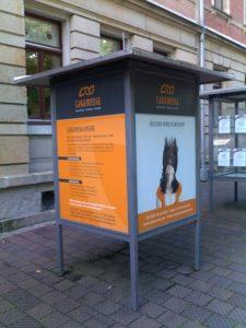 351-Caramedia-Vitrine Dresden
