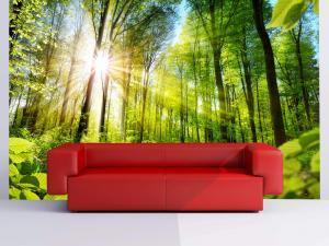 504-Fototapete-Wall-Art-Tapete-Aufkleber-Wandbild-Wald-drucken