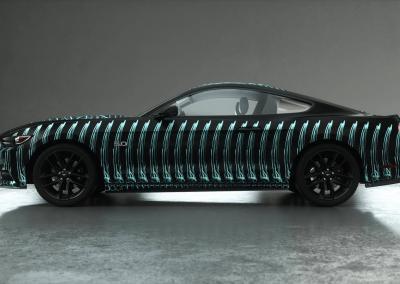 Folierung-Auto-x-ray bone cage