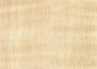 WG-478-3M-Di-Noc-Wood-Grain-Holzfolie-Sycamore-Bergahorn