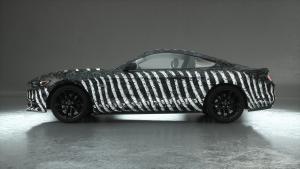 Wrap-Autofolie-bone-cage