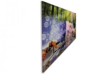 595-Bilderdruck-Acrylglas-Hinterglas