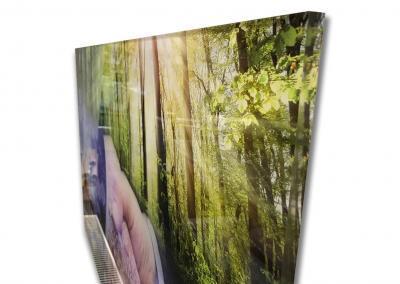 595-Fotodruck-Plexiglas-Bild