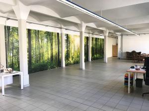 599-XXL-Wandbild-Riesen-Foto-Wald-Digitaldruck-Dresden