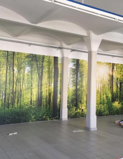 599-XXL-Wandbild-Riesen-Foto-Wald-Idylle-Pausenraum-Halle