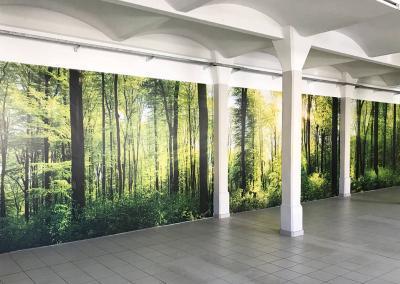 599-XXL-Wandbild-Riesen-Foto-Wald-Produktion-Dresden