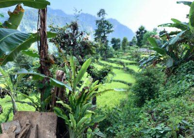 Idylischer Blick von Schule in Nepal