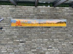 709-Leuchtschild-Leuchtbild-LED-Hinterleuchtung-Wandbild-Alpen-Bergwiese-Wanderschuhe