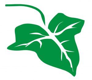 Pflanzen_0013 blatt-Wandtattoo-Fensterbild-Wandbild-Wandaufkleber