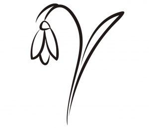 Pflanzen_0031 schneegloeckchen-Wandtattoo-Fensterbild-Wandbild-Wandaufkleber