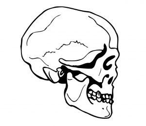 fantasy_0008 totenkopf skull Wandtattoo