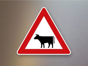Verkehrsschild-Verkehrszeichen-Gefahrenzeichen-Viehtrieb-Aufstellung-rechts-101-12